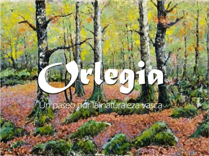Orlegia, nueva exposición para disfrutar de la naturaleza vasca